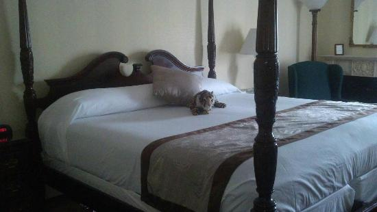 John Carver Inn: The stuffed kitty is mine, but I wish I could take the bed home as well!