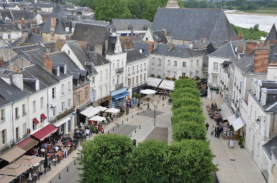Le Vieux Manoir: The town of Amboise from the Chateaux