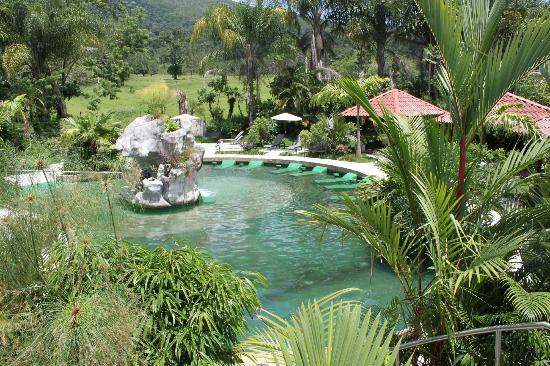 Paradise Hot Springs: Lush Gardens at Palma Real Geothermal pool.