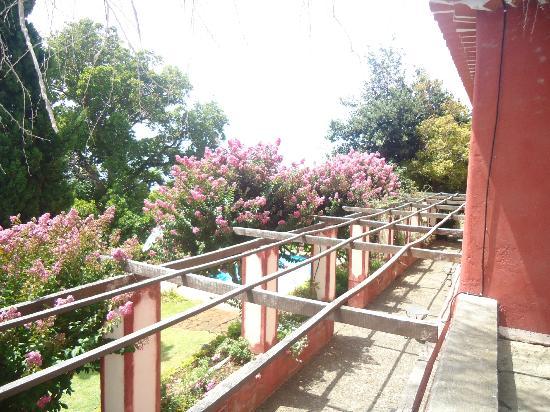 Quinta das Vinhas: Jardim