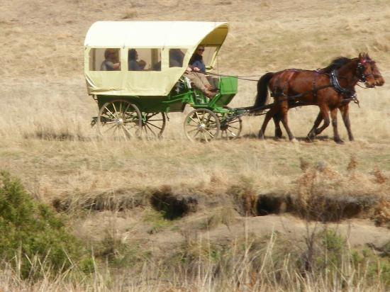 Emirates One&Only Wolgan Valley: Complimentary Carriage Ride