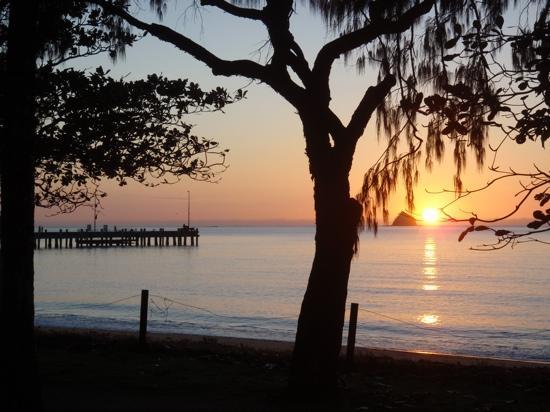 Pete's Place: palm cove sunrise