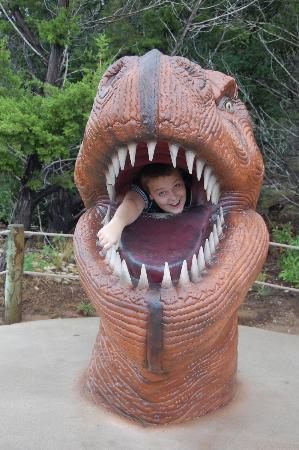 Dinosaur World: Dinner for Dino!