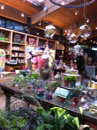 Gift shop picture of new york botanical garden bronx - Bronx botanical garden free admission ...