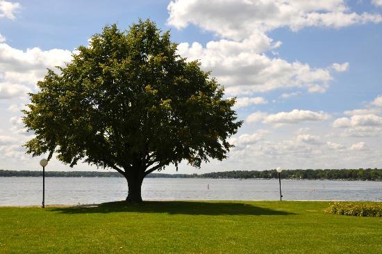 Lake Lawn Resort: Lake Delavan
