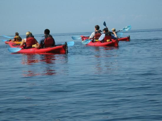 Smugglers Villa Resort: Kayak tour