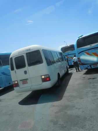 Jamaica Tours Ltd Reviews