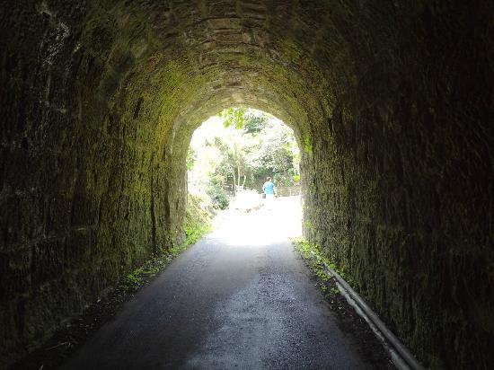 Ubara Risokyo: Tunnel