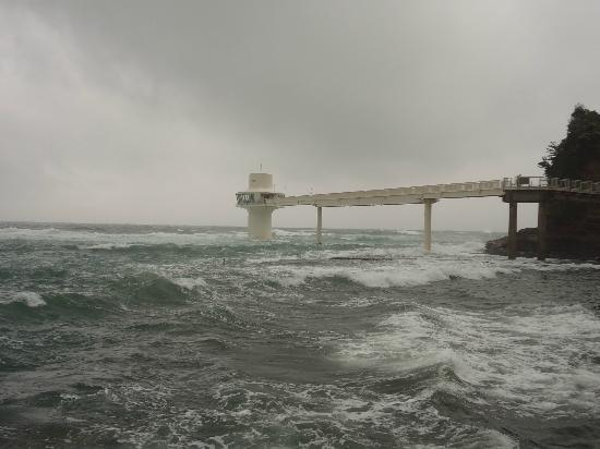Katsuura Undersea Park: A rough day