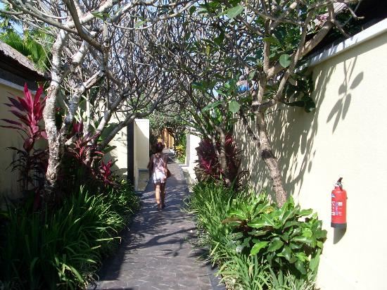 Villa Mahapala: walkway from private villas