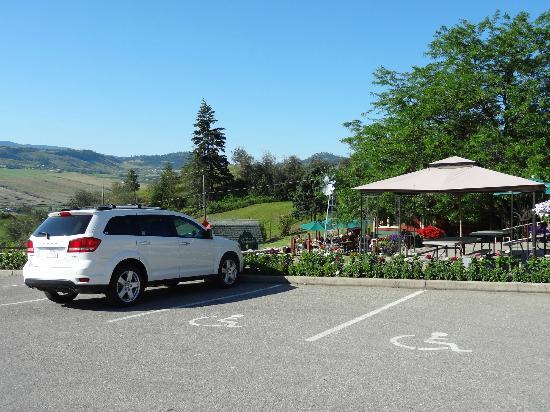 Davison Orchards Country Village : Large carpark & wheelchair friendly - Davison Orchards