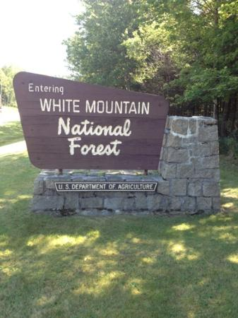 White Mountain National Forest: a welcome Sign !
