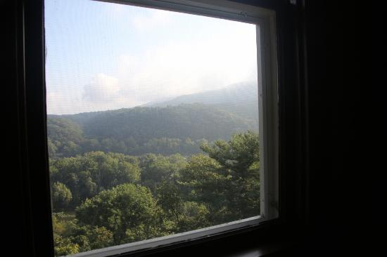 Laurel Lodge: View out the window