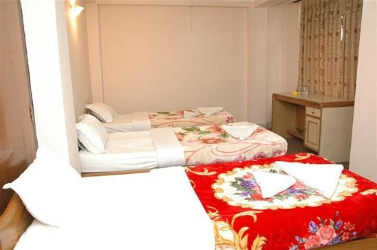 Festoon Hotel: Basic triple bed room