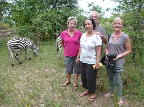 Ezulwini Game Lodges: Up close with the zebras.