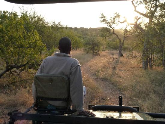 Ezulwini Game Lodges: Tracking into the sunset