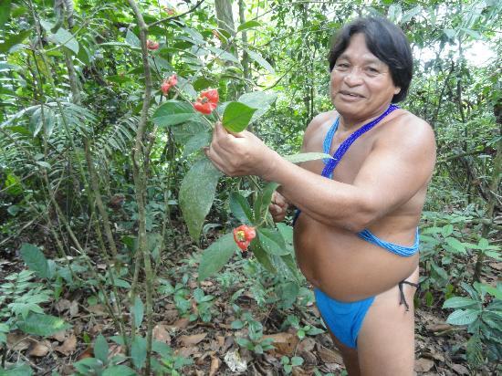 Embera Tours Panama: Embera Medicine Man