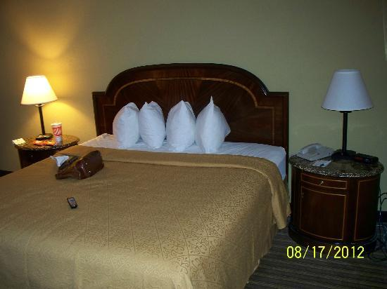Quality Inn & Suites Pensacola Bayview: My room