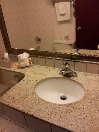 Econo Lodge South: granite