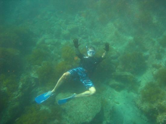 Sodegahama Beach : Underwater