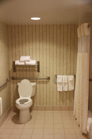 Hilton Garden Inn Syracuse: Bathroom