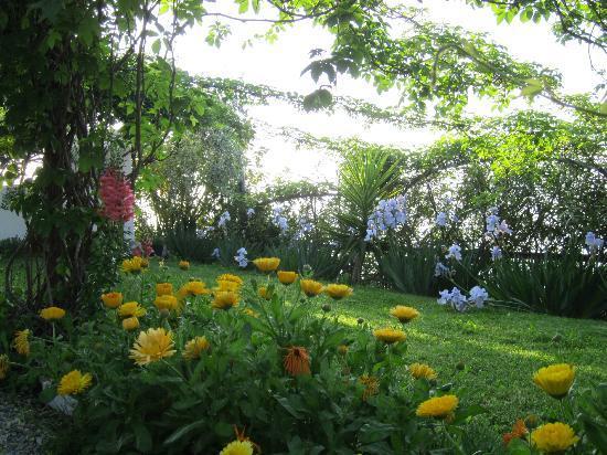 La Casa di Ketty : un angolo del giardino