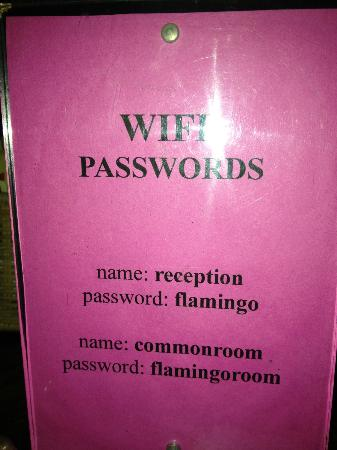 Flamingo Hostel : WIFI Passwords