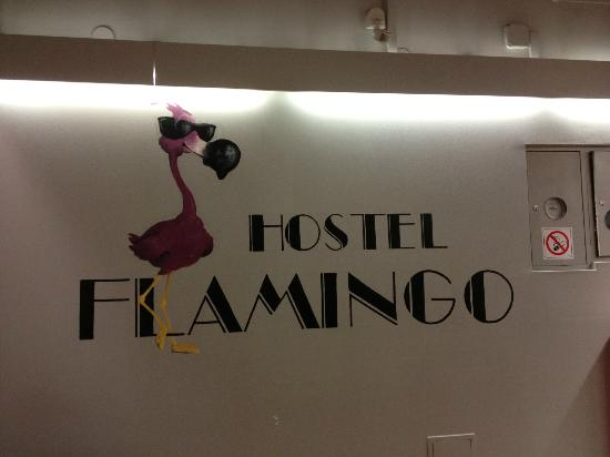 Flamingo Hostel : Outside the Hostel