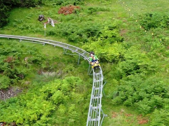 Alpine Coaster : every car fits two people
