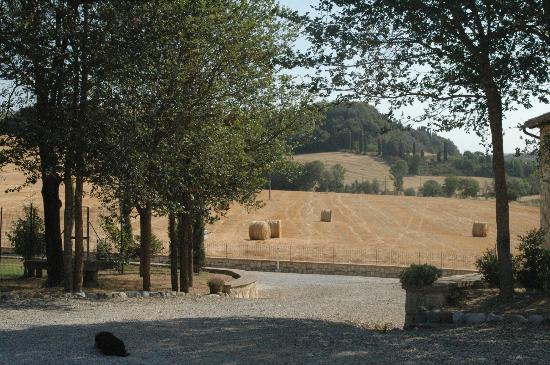 Agriturismo Santarcangelo: Entrada al agriturismo