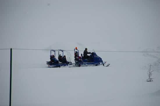 Hotel ...mein Neubergerhof: Kindertransport zum Skizwergekurs