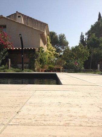 Le Mas d'Acanthe: Mas d'Acanthe : vue de la piscine