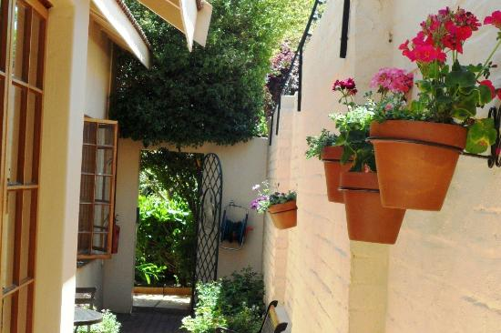 Avondhu Guest House: Passageway to studios