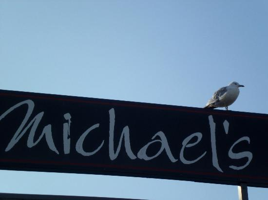 Michael's Harborside: even the seagulls like the view from Michaels!