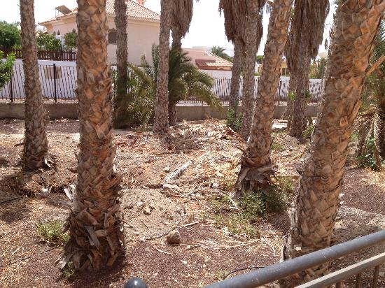 Stella Canaris Chalets Tropical: Garden View