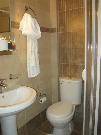 Anemolia Apartments: il bagno