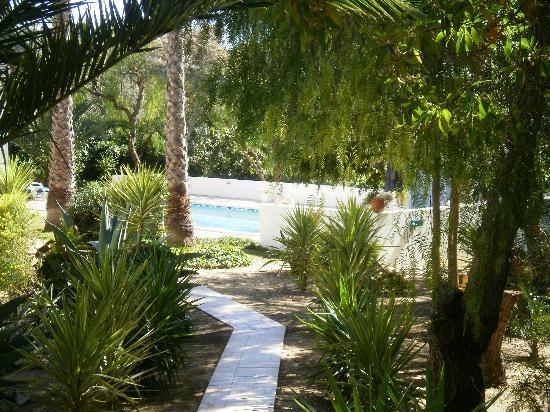 Villa Spliethoff: pad naar appartement en zwembad
