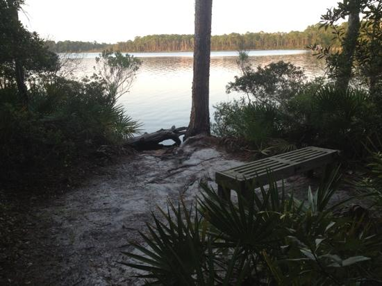 Niceville, FL: Views from the trail.
