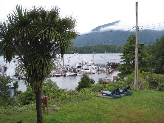 Tofino Motel HarbourView : took this while drinking coffee on the balcony