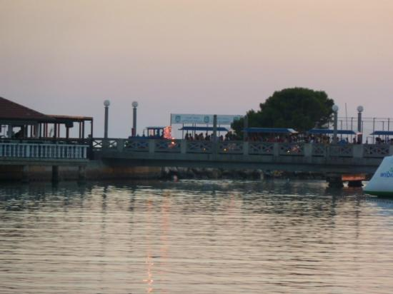 Melia Istrian Villas: train over bridge running to Umag