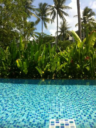 Holiday Inn Phuket Mai Khao Beach Resort: junior svit