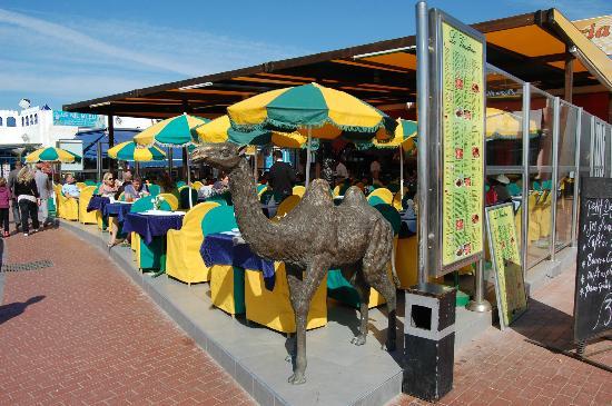 Restaurant Le V : restaurant plein soleil le jour et plein ambiance le soir
