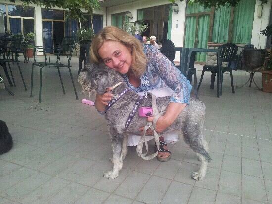 Hotel Arcobaleno: hall..i cani sono i benvenuti!!!