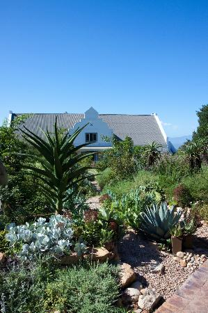 Fynbos Ridge Country House & Cottages: Country House set in fynbos