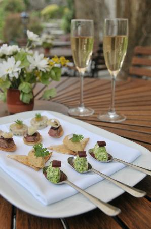 Howards House: Champagne and canapes on the terrace