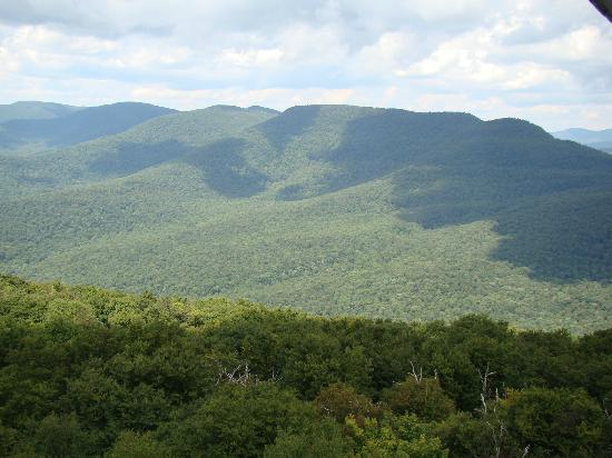 View of the Central Catskill peaks from the fire tower on Overlook Mountain.