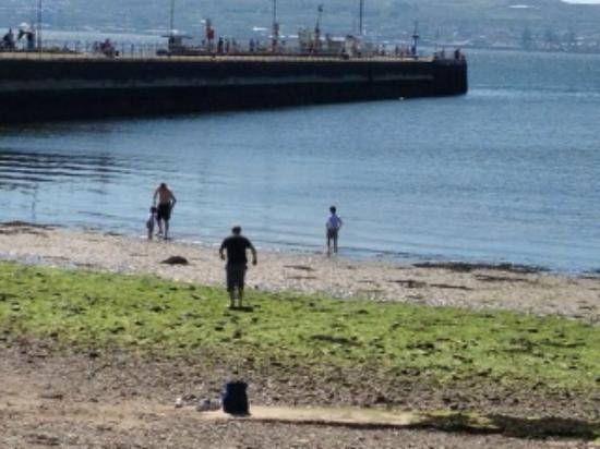 Riverbank Bar and Restaurant : Paddling opposite us next to helensburgh Pier