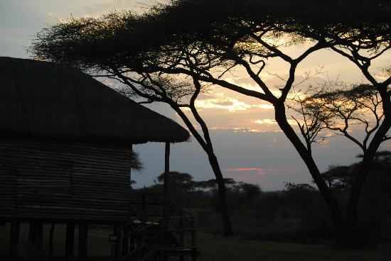 Ikoma Safari Camp: Tramonto dalla nostra tenda