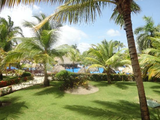 jardin devant la piscine du club premier - Photo de Grand Bahia ...