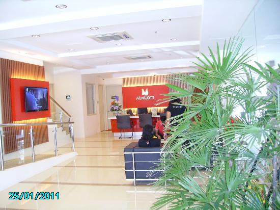 Hotel MinCott: reception